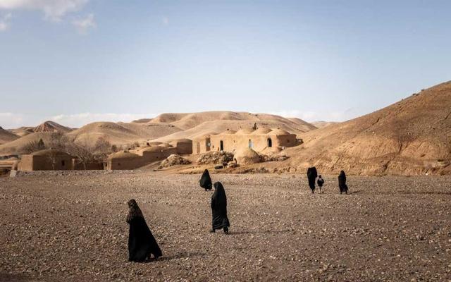 afghan-widows