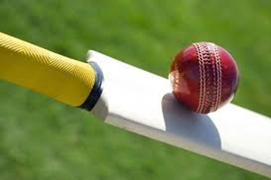 cricket-3